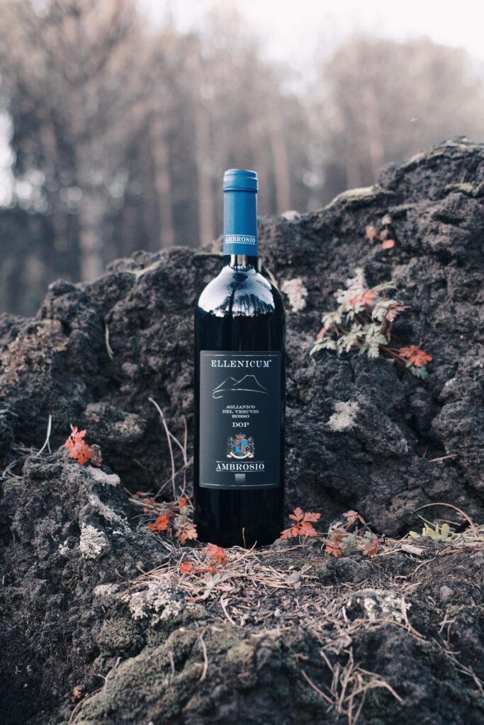 wines ambrosio